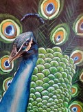 Bethany Boyd_The Bird_Watercolor on Wood