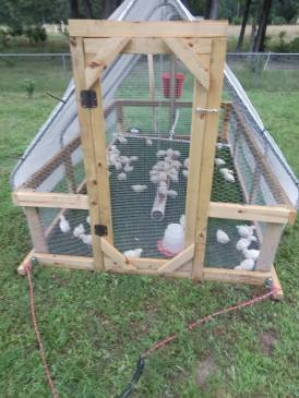 Earthstead chicken coop.jpg