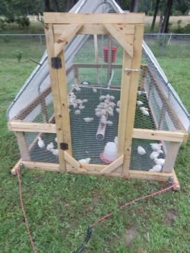 Earthstead chicken coop.jpg
